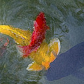 Being Koi 2 by Rich Franco