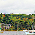 Belfast Maine Harbor by Jack Schultz
