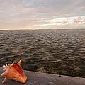 Belize Scenic by Jean Noren