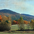 Belknap From Rogers Field by Mim White