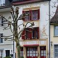Belle Epoque House by Felicia Tica