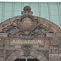 Belle Isle Aquarium Entrance 1 by Randy J Heath