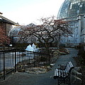 Belle Isle Conservatory Courtyard by Two Bridges North