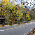 Bells Mill Road In Autumn by Bill Cannon