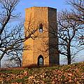 Beloit Historic Water Tower by Viviana  Nadowski