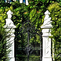 Belvedere Palace Gate by Mariola Bitner