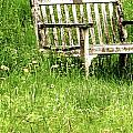 Bench At Hillstead by Hannah Nagel