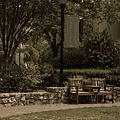 Bench At University Baptist Church by Paulette B Wright