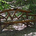 Bench Made Of Tree Branches by Catherine Gagne