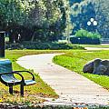 Bench In A Park With A Walkway by Alex Grichenko