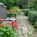 Bench In Borde Hill Gardens by Vanessa Thomas