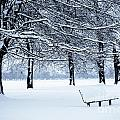 Bench In Snow by Lana Enderle