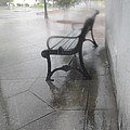 Bench In The Rain by James Potts
