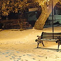 Bench In The Winter Park by Guy Ricketts