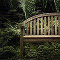 Bench by Margie Hurwich