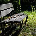 Bench by Mats Silvan