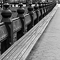 Bench Row Black And White by Christiane Schulze Art And Photography