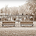 Benches By The Cemetery In Sepia by Valentino Visentini