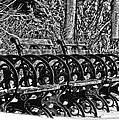 Benches In The Snow - Bw by Larry Jost