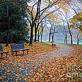 Benches Of Fall by Jost Houk