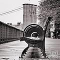 Bench's Circles And Brooklyn Bridge - Brooklyn Heights Promenade - New York City by Carlos Alkmin