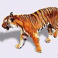 Bengal Tiger by DiDi Higginbotham