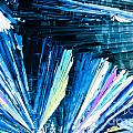 Benzoic Acid Microcrystals Color Abstract by Stephan Pietzko