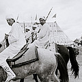 Berber Horsemen by Shaun Higson