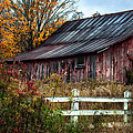 Berkshire Autumn - Old Barn Series   by Thomas Schoeller