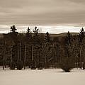 Berkshires Winter 1 - Massachusetts by Madeline Ellis