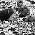 Berlin, 1945 by Granger