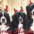 Berner Holiday by Liane Weyers