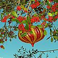Berry Christmas by Peg Urban