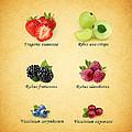 Berry by Mark Rogan