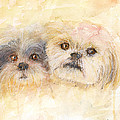 Best Buddies by Peggy Bosse