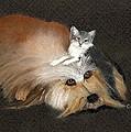 Best Friends by Catherine Swerediuk
