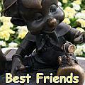 Best Friends by David Nicholls