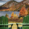 Best Seats In Acadia by George Oze