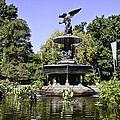 Bethesda Fountain Iv - Central Park by Madeline Ellis