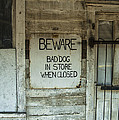 Beware Bad Dog by Terry Rowe