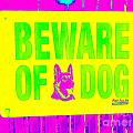 Beware Of Dog by Ed Weidman