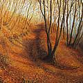Beyond Silence by Kiril Stanchev