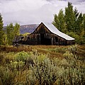 Beyond The Sagebrush by Image Takers Photography LLC - Laura Morgan