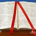 Bible  by Jim Pruitt