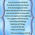 Bible Quote Love Is Patient And Kind by Scarebaby Design
