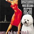 Bichon Frise Art - Una Parigina Movie Poster by Sandra Sij