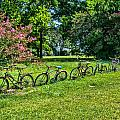 Bicycle Fence  by Jeanne May