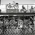 Bicycle Heaven by Alexander Senin