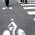 Bicycle Lane by Aj Photo/science Photo Library