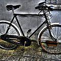 Bicycle by Nina Ficur Feenan